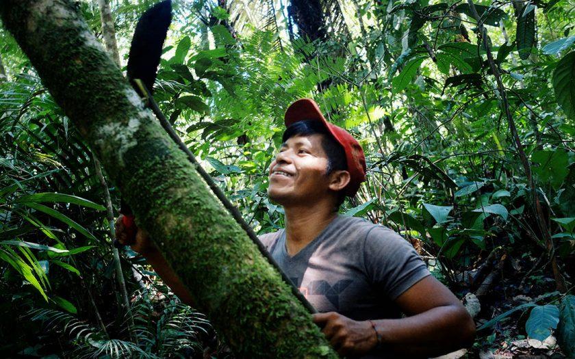 Ursprungs- och stamfolk, i till exempel Colombia, är bättre på att bevara skog än andra visar en rapport från FN-organet FAO.