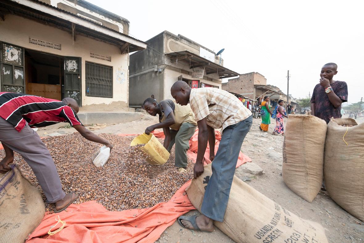 Den andel av Sveriges bistånd som går till att stödja jordbruk, till exempel i Uganda, räcker inte till om världen ska utrota all hunger till år 2030.