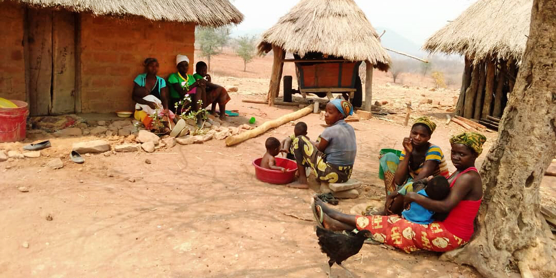 I södra delarna av Zambia pågår en hungerkris där människor nu tvingas leva på rötter och giftiga frukter.