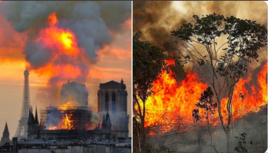 Är det rättvist att jämföra engagemanget kring när Notre Dame brann, med bränderna i Amazonas? Det tycker många som nu är upprörda på Twitter och i desperation även ber Greta Thunberg att göra något.