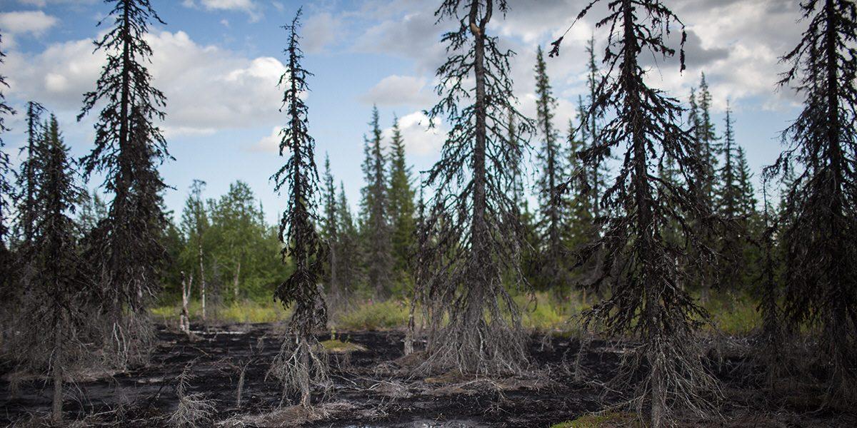 En förorenad tjärn i närheten av Usinsk i arktiska Ryssland.