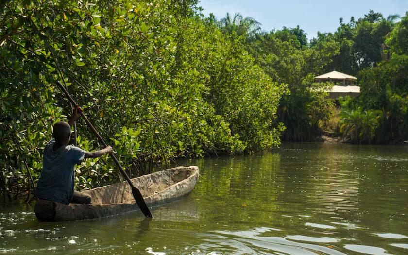 Gambiafloden flyter fram i Makasutuskogen.