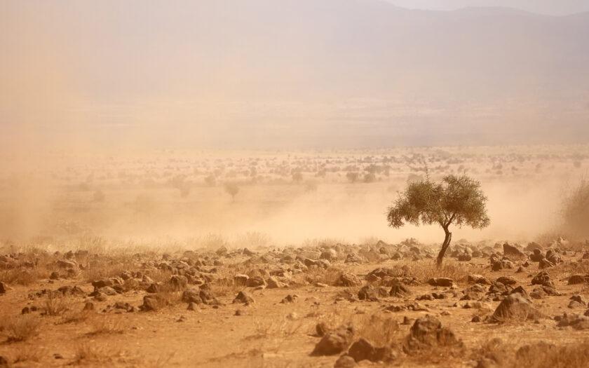 Två dåliga regnperioder har orsakat svår torka i många delar av Kenya.